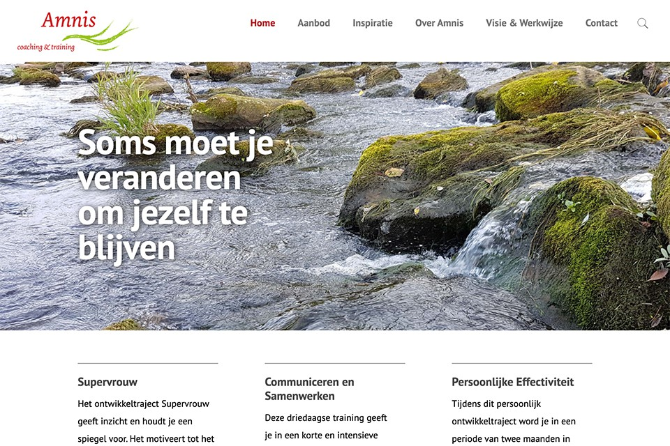 amnis coaching homepage website
